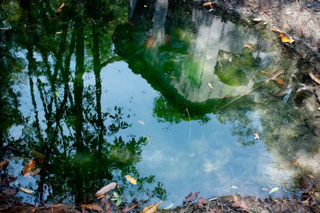 Koulen_Holly_Water